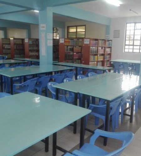 poweroptions portfolio library construction